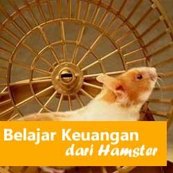 Belajar Keuangan dari Seekor Hamster