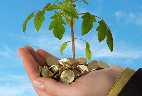 Laws Of Money Tree  - Ikuti Rumus MONEYTREE dan Anda akan Sejahtera 1 Perencana Keuangan Independen Finansialku - Definisi Compound Interest Adalah