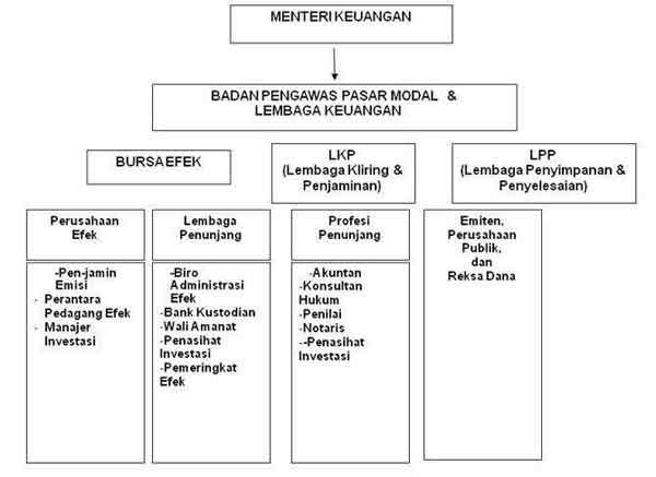 Struktur Organisasi dan Pelaku Pasar Modal 1 - Finansialku
