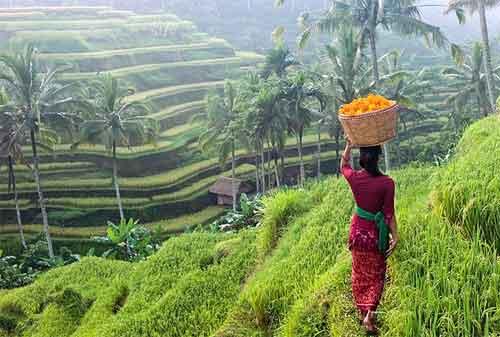 Tempat Liburan ke Bali dan Lombok, I Love It! 05 - Finansialku
