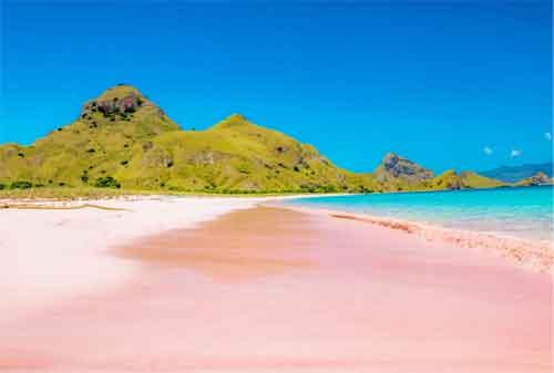 Wisata Pulau Komodo Yang Dilirik Wisatawan Lokal Maupun Wisatawan Mancanegara 02 - Finansialku