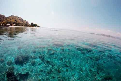 Wisata Pulau Komodo Yang Dilirik Wisatawan Lokal Maupun Wisatawan Mancanegara 08 - Finansialku