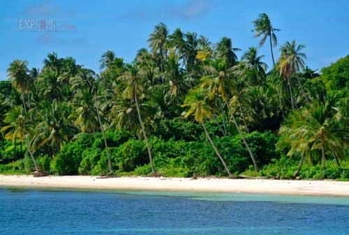 Save Your Trip! Liburan Terbaik di Pulau Wakatobi 03 - Finansialku