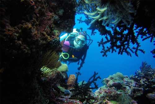 Save Your Trip! Liburan Terbaik di Pulau Wakatobi 04 - Finansialku