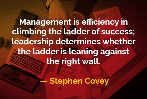 Kata-kata Bijak Stephen Covey Efisiensi Menaiki Tangga Kesuksesan - Finansialku