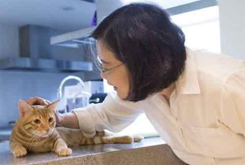 Kabar Gembira! Ada Ide Bisnis Rumahan Bagi Pecinta Binatang Peliharaan 05 - Finansialku