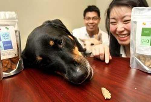 Kabar Gembira! Ada Ide Bisnis Rumahan Bagi Pecinta Binatang Peliharaan 07 - Finansialku