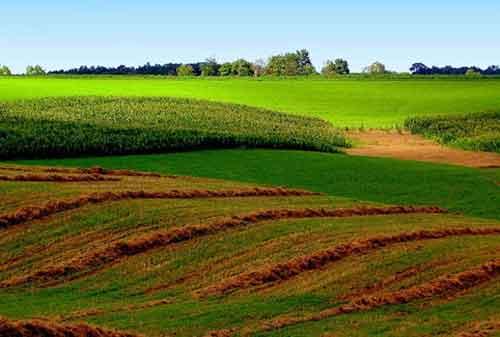Pahami Investasi Tanah Yang Mendatangkan Keuntungan dan Keberhasilan! 01 - Finansialku