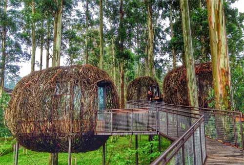 Apa Saja Tempat Wisata Di Lembang Yang Asyik Untuk Kuliner