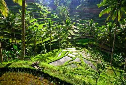 10 Kota Terindah di Indonesia yang Perlu Anda Kunjungi 06 - Finansialku