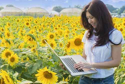Marketplace Pertanian 02 Jual Beli Online Pertanian - Finansialku