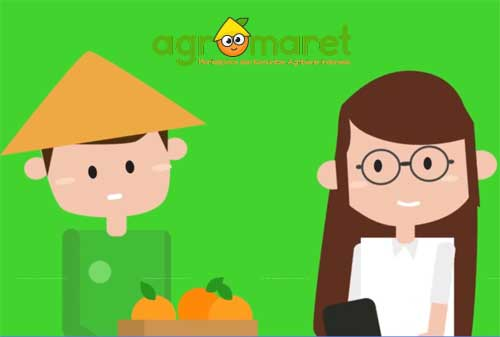 Marketplace Pertanian 03 Agromaret - Finansialku