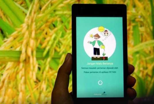 Marketplace Pertanian 05 Aplikasi Petani - Finansialku