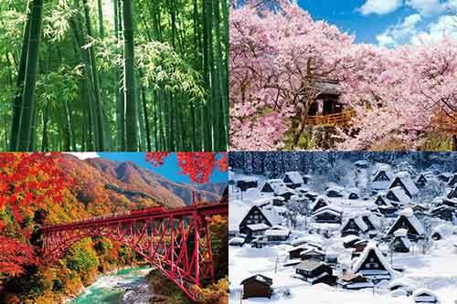 Mau Jalan-jalan ke Jepang? Ini Dia Tips Backpacker ke Jepang 04 Finansialku