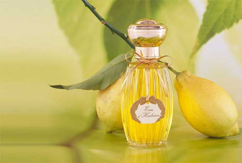 10 Parfum Pria Termahal di Dunia 04 - Finansialku