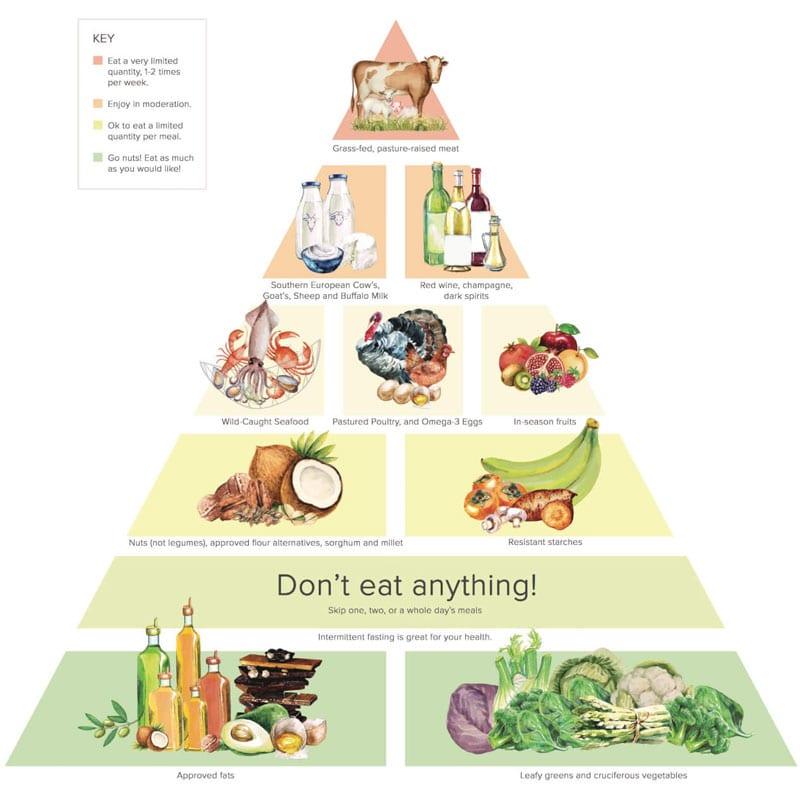Lakukan Diet Makanan 03 Piramida Makanan Dr. Gundry - Finansialku