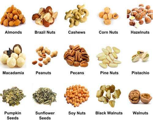 Lakukan Diet Makanan 05 Kacang - Finansialku