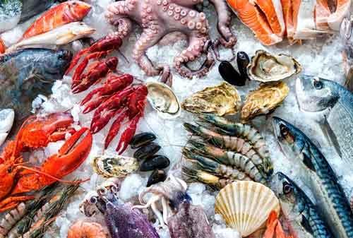 Lakukan Diet Makanan 07 Makanan Laut - Finansialku