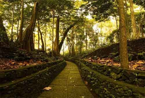 Paket Wisata Bali 04 Ubud Monkey Forest - Finansialku