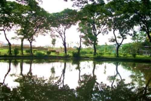 Taman di Surabaya 02 - Taman Wonorejo