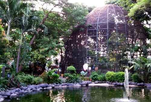 Taman di Surabaya 04 - Taman Flora Bratang