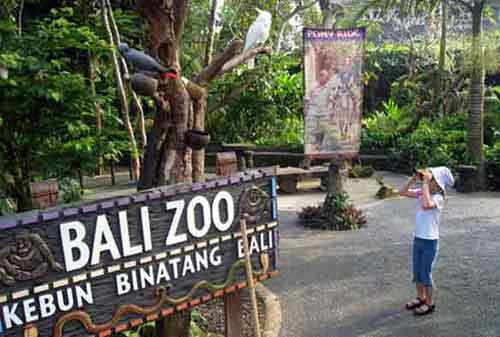 Wisata-di-Bali-04a-Kebun-Binatang-Bali-(Bali-Zoo)---Finansialku