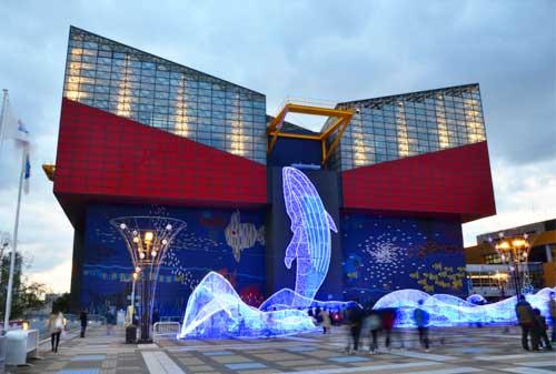 11-Osaka-Aquarium-Kaiyukan-Finansialku