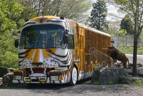 3-Fuji-Safari-Park-Finansialku