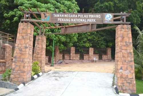 Tempat Wisata di Malaysia 15 Penang National Park - Finansialku
