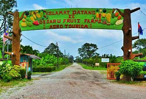 Tempat Wisata di Malaysia 27 Desaru Fruit Farm - Finansialku