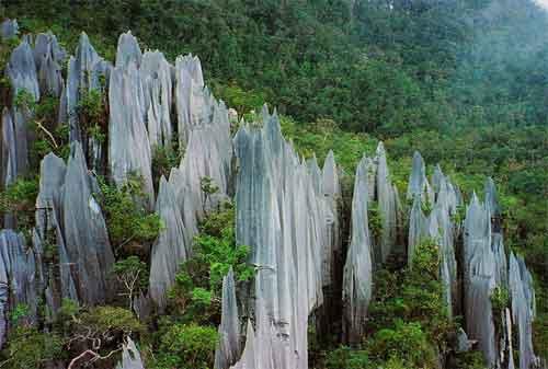 Tempat Wisata di Malaysia 31 Gunung Mulu National Park - Finansialku