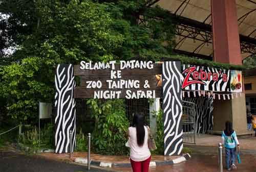 Tempat Wisata di Malaysia 34 Taiping Zoo - Finansialku