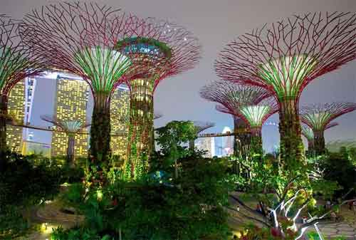 Tempat Wisata di Singapura 31 Gardens by The Bay - Finansialku