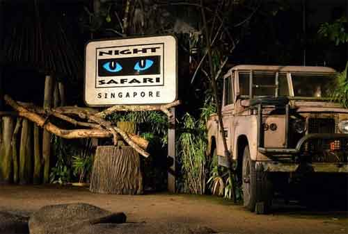 Tempat Wisata di Singapura 43 Singapore Night Safari - Finansialku