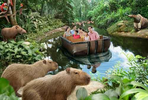 Tempat Wisata di Singapura 45 River Safari Wildlife Park - Finansialku