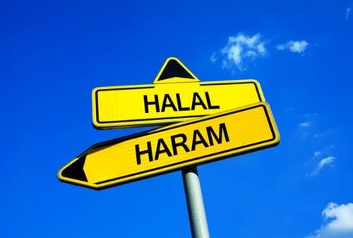 5+ Contoh Bisnis Syariah 1 Finansialku
