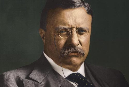 Kata-kata Bijak Theodore Roosevelt 2 Finansialku