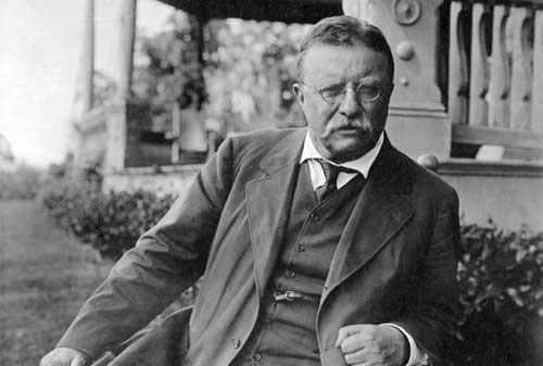 Kata-kata Bijak Theodore Roosevelt 3 Finansialku
