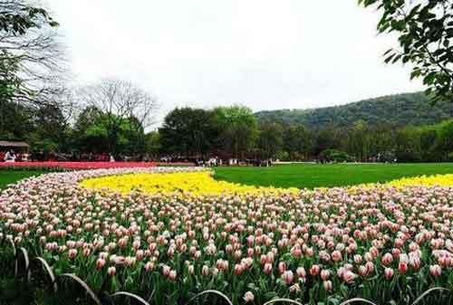 Destinasi Wisata Hangzhou 06 Taiziwan Park - Finansialku