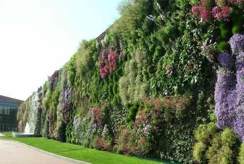 Dekorasi Taman 04 (Vertical Garden) - Finansialku
