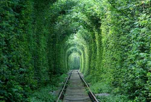 Keren, Bukan Editan! Ini 10+ Tempat Wisata Unik di Dunia 06 Tunnel Love - Finansialku