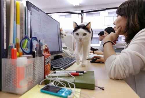 Begini Ya, 5 Cara Sakti Membuat Karyawan Betah di Kantor 06 Karyawan 6 - Finansialku