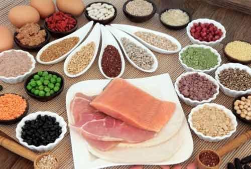 Makanan yang Mengandung Protein 03 - Finansialku
