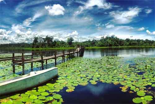 Destinasi Wisata Brunei Darussalam 05 Danau Tasek Merimbun - Finansialku