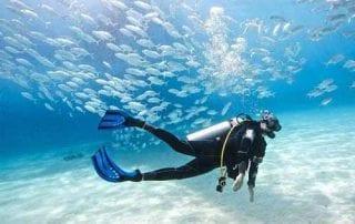 Kursus Diving 01 - Finansialku