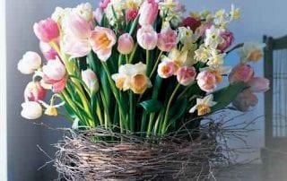 Biar Lebih Menawan dan Indah, Ini Jenis Bunga Hias yang Bisa Kamu Pakai 01 - Finansialku