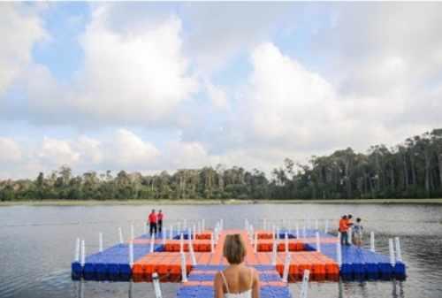 Bintan Island 03 Dancing Fish - Finansialku