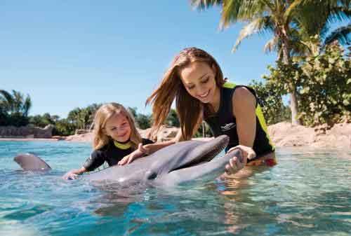 TOP 10 Harga Tiket Taman Hiburan Termahal Di Dunia, Mau Coba 11 - Finansialku